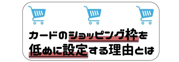 審査 甘い クレジットカード ショッピング枠