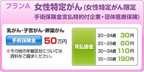 J CARD W plus L お守りリンダ 女性特定がん限定手術保険金